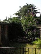 The back-yard of the School House, with old coal storages is turning into a wild garden too, paradise for bumble bees